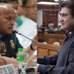Honasan: 'The PNP does not make policy'