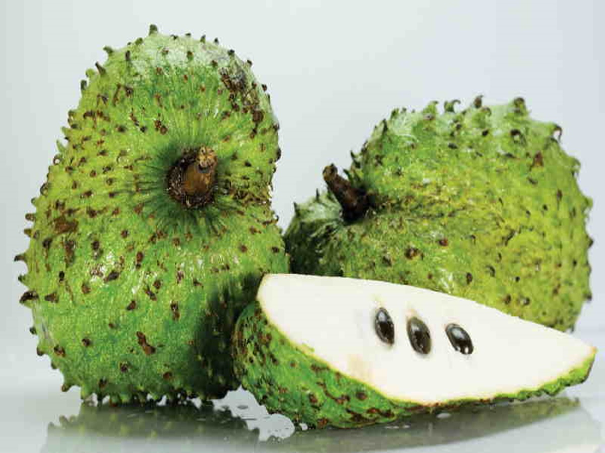 guyabano For a long time the fruit, leaves and bark from the tropical guyabano tree have been used as a natural medicine for many illnesses and now it also seems to be a natural cancer cell killer.