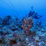 Government Scheduled Benham Rise Expedition On 2018
