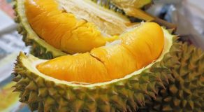 Powerful Health Benefits Of Durian Fruit