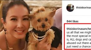 Korina Sanchez Opens Up About Her Love For Dogs