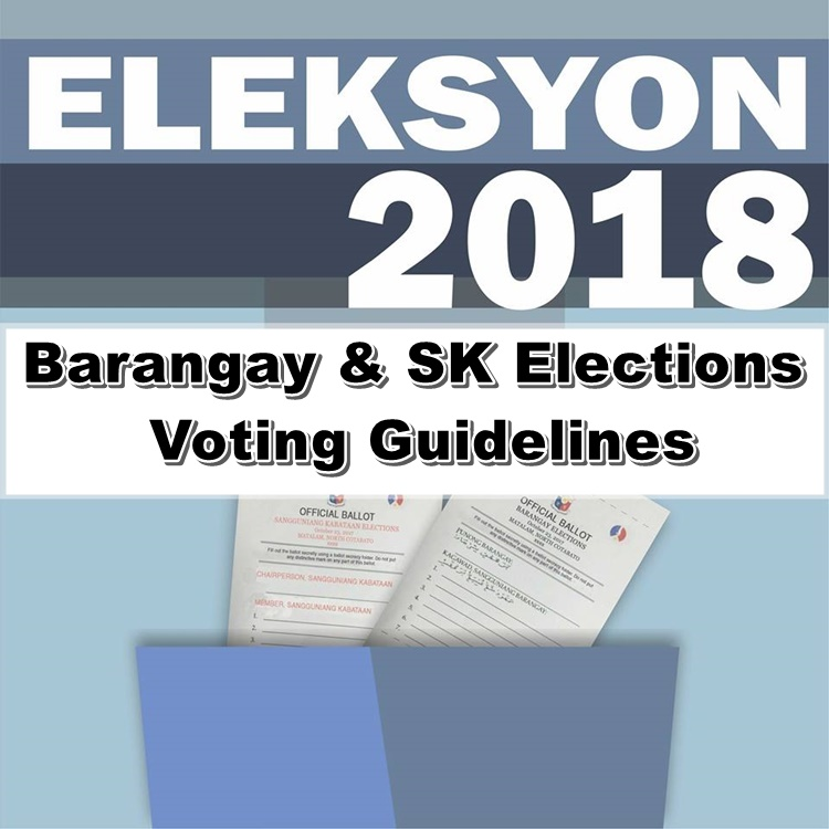 Voting Guidelines