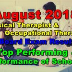 August 2018 Physical & Occupational Therapist