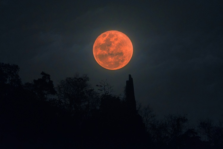 red moon 2019 florida time - photo #28