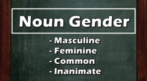 NOUN GENDER: 3 Classifications, Their Definitions & Examples