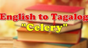 "TRANSLATE ENGLISH TO TAGALOG: English To Tagalog Of ""Celery"""