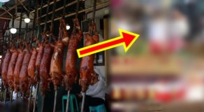 Lechon Festival: Roasted Pigs Wears National Costume On Top Of Floats