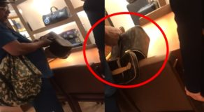 Angry Customer Rips Own Luxurious Bag in Front of Store Employee