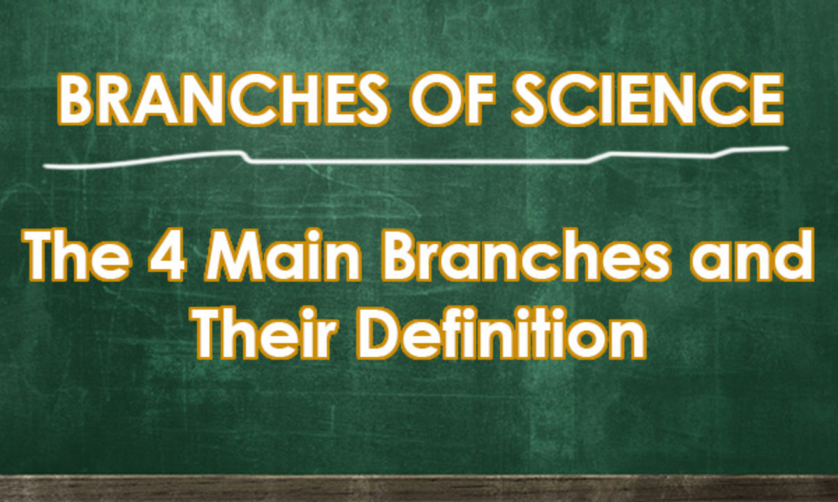 Branches Of Science The 4 Main Branches And Their Definition
