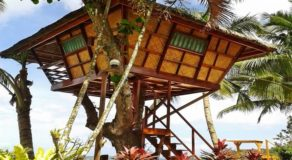 Ausan Beach Front Cottage & Restaurant: A Soothing Palawan Haven