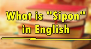 "SIPON IN ENGLISH – What Is the English Translation of ""Sipon""?"