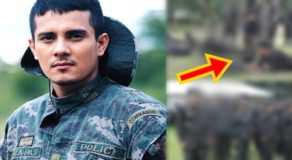 PHOTOS: Ejay Falcon Joins Philippine Air Force, Netizens React