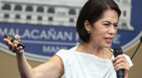 Gina Lopez Cause of Death – Former DENR Secretary Died at 65