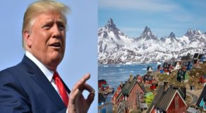 Donald Trump Wants To Buy Greenland, Officials React