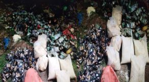 Massive Amount of Relief Goods Found at Dumpsite in Camarines Sur
