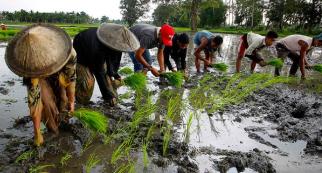 House Leaders Pushes For Economic Tokhang Against Rice Hoarders