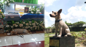 Viral Dog 'Buboy' Who Waited For His Dead Master Honored w/ Statue