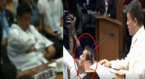 Photos of Sen. Franklin Drilon Caught Sleeping Earned Various Reaction