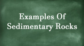 What Are The Examples Of Sedimentary Rocks? (Answer)