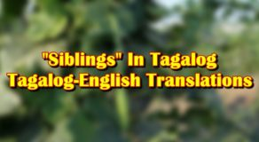"Siblings In Tagalog: English-Tagalog Translations of ""Sibling"""