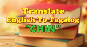 "TRANSLATE ENGLISH TO TAGALOG – ""Chin"""