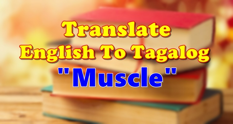 Translate English To Tagalog Muscle