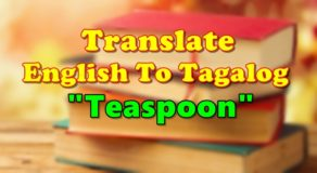 "TRANSLATE ENGLISH TO TAGALOG – ""Teaspoon"""