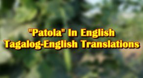 "Patola In English: Tagalog-English Translation Of ""Patola"""