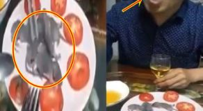 Coronavirus: Disgusting Video of Asian Man Eating Baby Mice Alive Elicits Comments Online