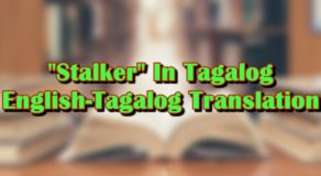 "Stalker In Tagalog: English-Tagalog Translations Of ""Stalker"""