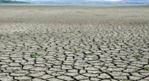 What Are The Impacts Of Drought? Meaning And Impacts