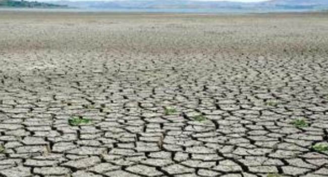 IMPACTS OF DROUGHT