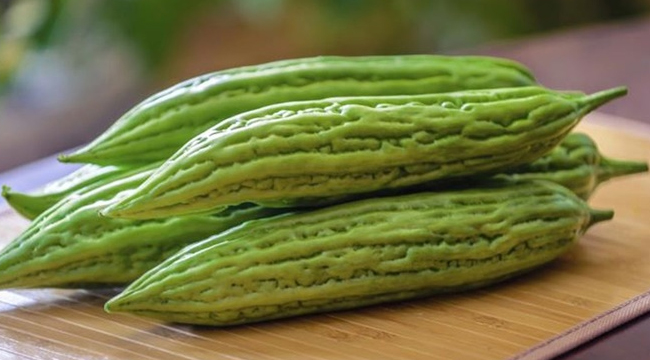 SCIENTIFIC NAME OF AMPALAYA