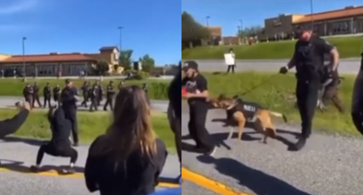 Twerking Protester Gets Bitten By Police Dog In The Tooshie
