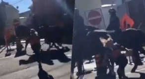 Protester Tries Attacking Horse, Instantly Gets Kicked (VIDEO)