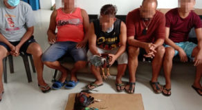"Argao Town Barangay Officials Arrested For ""Tigbakay"""
