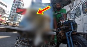 PHOTOS: Pedicab Driver Shows Pet Dog Wearing Makeshift Face Shield