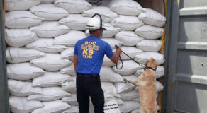 Bureau of Customs In Port of Cebu  Seized Smuggled Rice