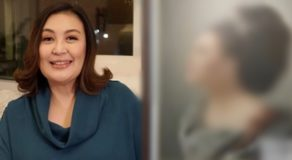 Sharon Cuneta Urge Fans To Support Local Artist Who Painted Her Old Photo