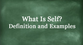 What Is Self? Definition And Usage Of This Term