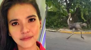 Alessandra de Rossi Reacts To Ostrich Running On The Loose in QC