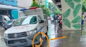 Police Patrol Vehicle Clamped Along the Road Elicits Comments Online