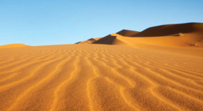What Is Desert? About The Barren Landscape