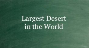 What Is The Largest Desert In The World? (ANSWER)