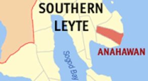 NPA Rebel Arrested In Anahawan Town, Southern Leyte