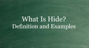 What Is Hide? Definition And Usage Of This Term