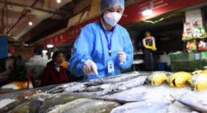 Frozen Fish Products In Indonesia Positive For Coronavirus