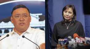 Robredo Playing Deaf To COVID-19 Response Says Palace