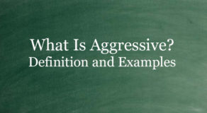 What Is Aggressive? Definition And Usage Of This Term
