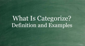 What Is Categorize? Definition And Usage Of This Term